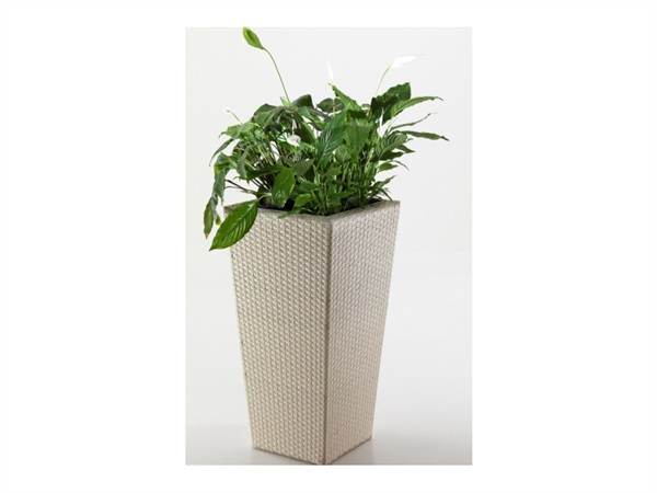 Porta vaso quadro in wicker beige, 120 cm