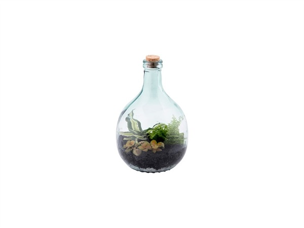 Set Terrarium in vetro Small, 5 lt